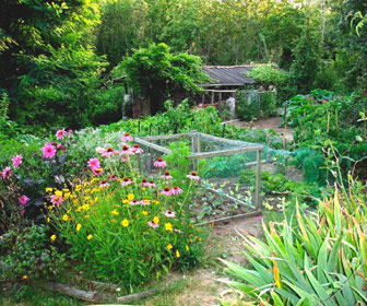 Calendriers jardinage 2015 icalendrier for Jardin potager 2015